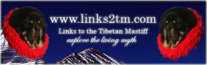club dogue du tibet